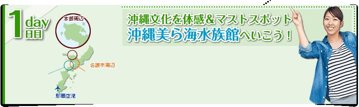 【1日目】沖縄文化を体感&マストスポット沖縄美ら海水族館へいこう!