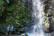 沖縄本島北部のター滝