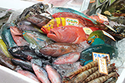 那覇市第一牧志公設市場鮮魚