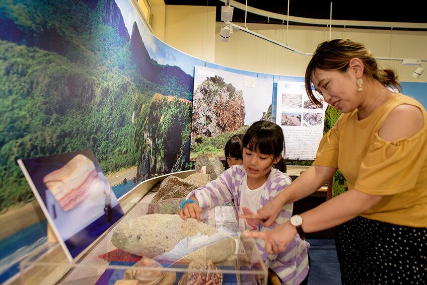 珍しい化石に子どもたちも興味しんしん