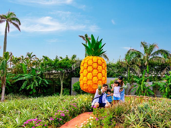 大きなパイナップルの前で思い出の1枚を撮影しよう!