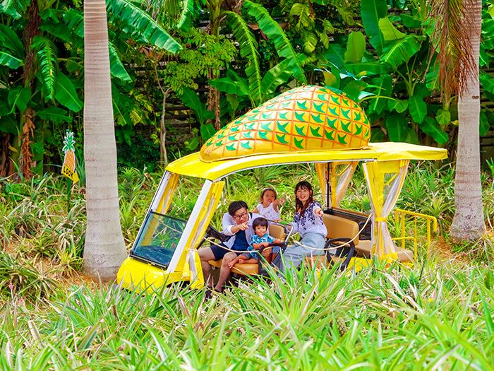搭上自動駕駛的鳳梨號遊園車來一場亞熱帶植物園大冒險