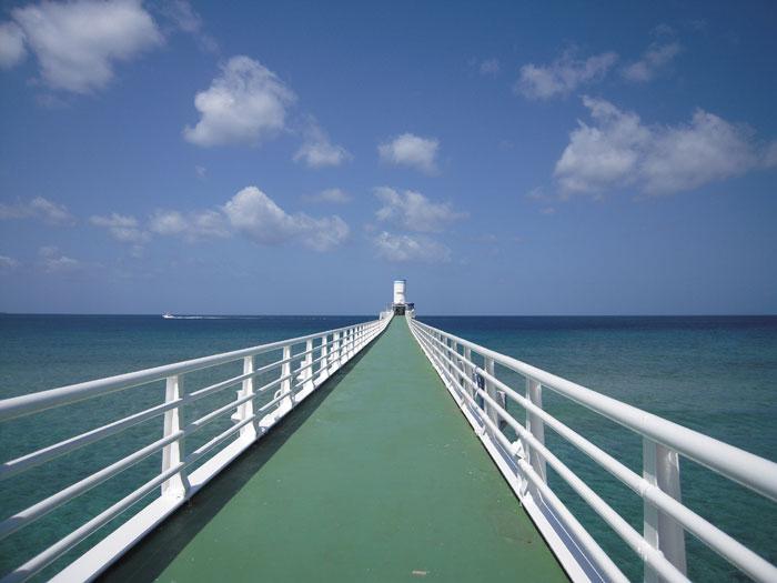 水平線に向かって伸びる橋の長さは170m