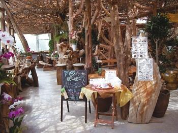 西町屋ではビオスの丘オリジナル商品や沖縄特産のお土産の販売をしている