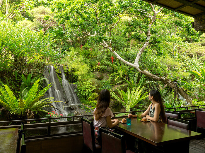 Let the cool sound of the waterfall relax your mind as you savor Okinawan cooking.