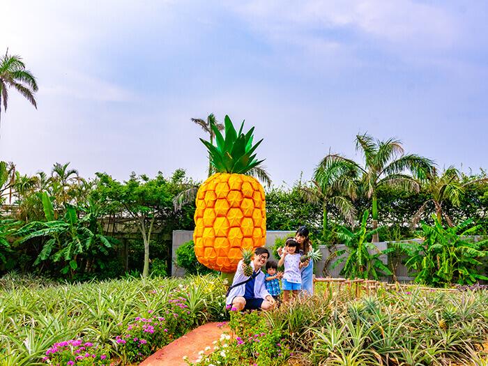 在園內散步時不妨到大鳳梨前,一起拍張紀念照