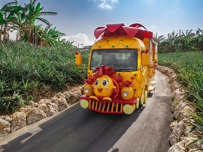 可以搭乘彷彿從繪本中一躍而出的可愛遊園車參觀鳳梨田
