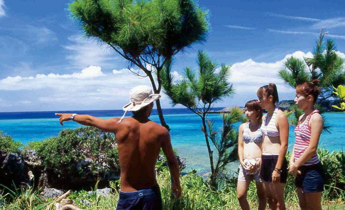 ガイドとまわるヨウ島エコツアーも人気