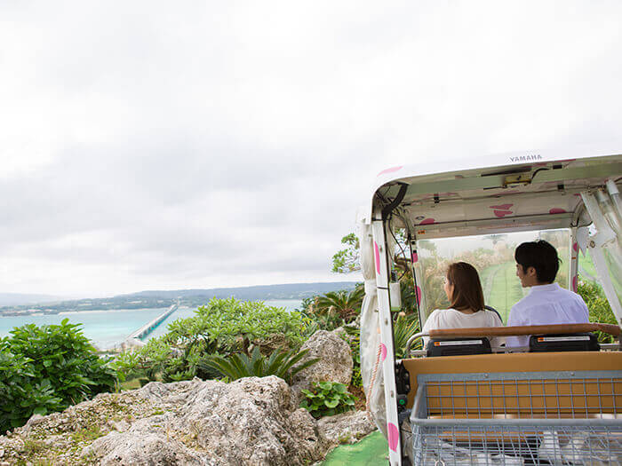 Enjoy the views in the automatic cart on your way to the observation tower.