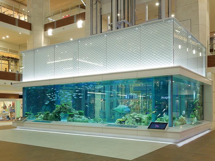 グランドスクエアの巨大水槽 「Rycom Aquarium」