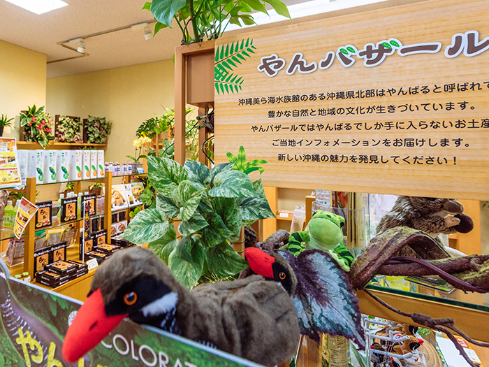 Yanbaru section, where you can find local products from Okinawa's northern area.