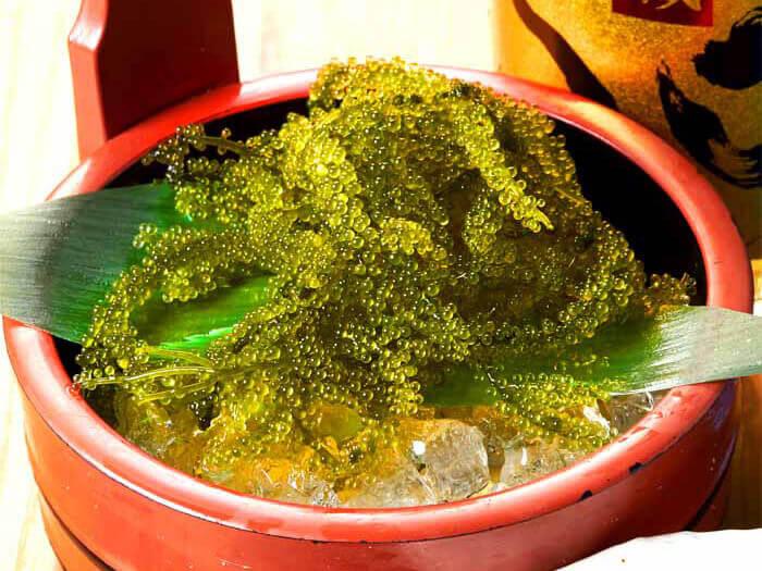 限時特價!充滿海水潮香的「沖繩縣產海葡萄」晚上20點前特價411日圓(平時627日圓)