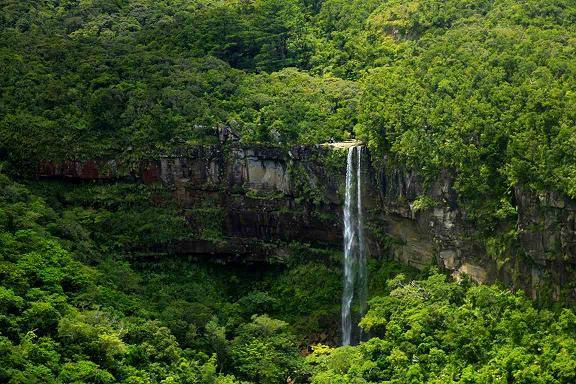 落差是沖繩之一,垂直下落的瀑布非常美麗值得一看。以皮艇和徒步旅行方式享受西表島的大自然和瀑布吧。