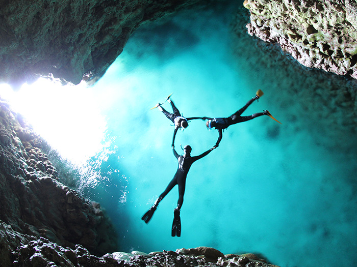 能發現許多只有在青之洞窟才能看見的獨特魚群