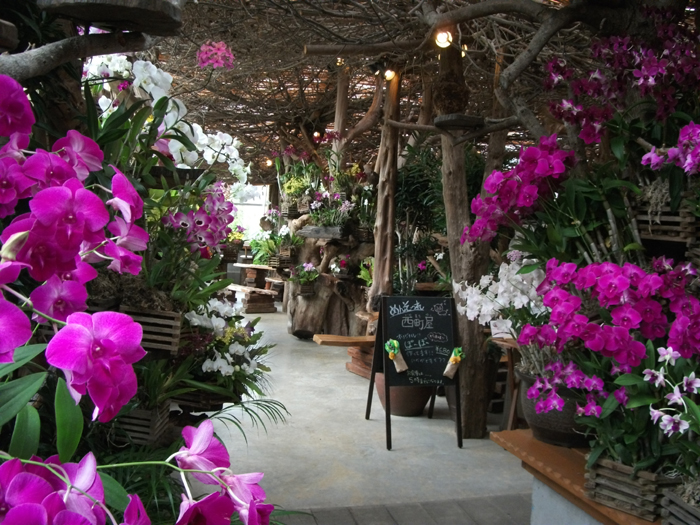 """Irimatiya""in garden center has a gift shop and diner"