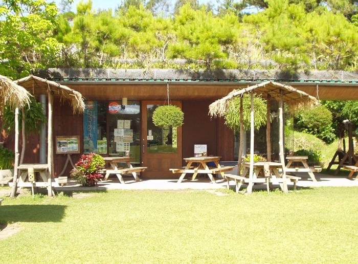 於園內的餐廳能夠品嘗沖繩麵、墨西哥塔可拌飯以及冰淇淋
