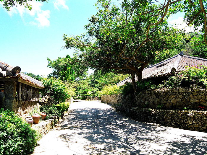 Take a leisurely walk on the road of Japanese old folk houses. You can feel the atmosphere of the ancient Ryukyu.