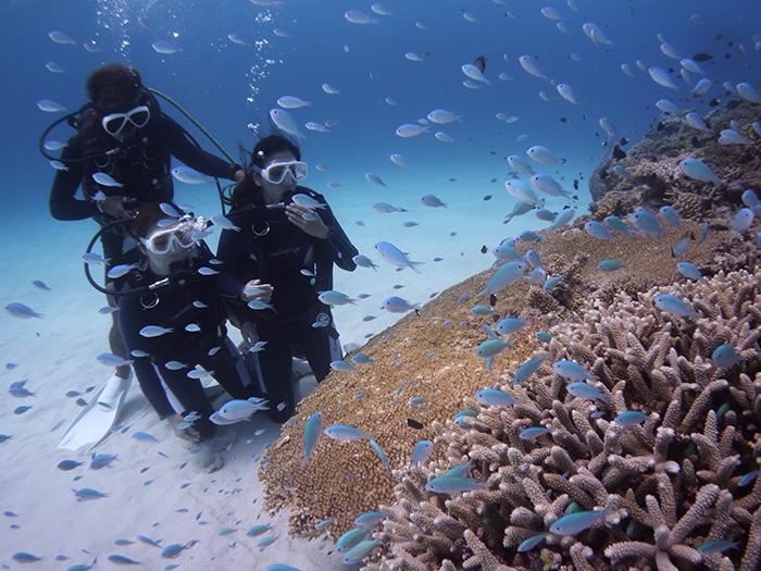 透過浮潛或潛水讓藍色大海療癒我們的身心
