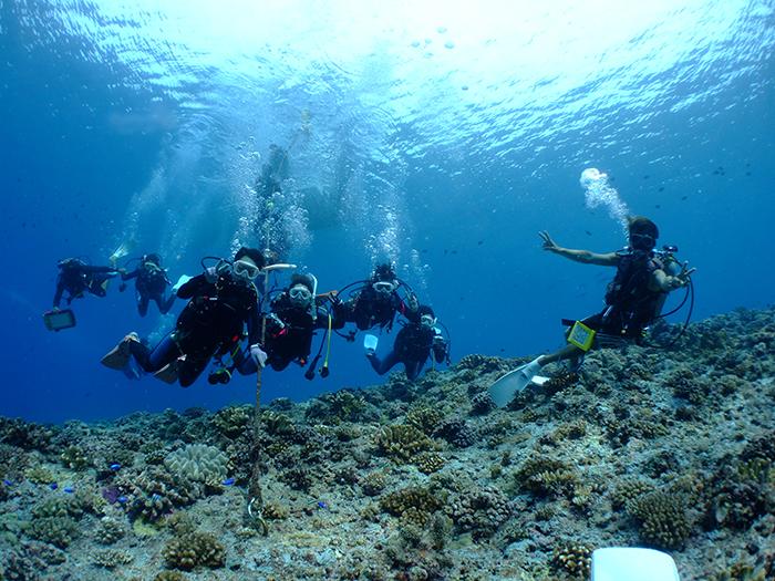 「結合三個觀光景點的慶良間諸島一日遊」 享受浮潛、淺水