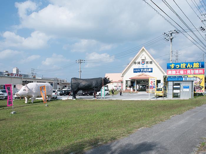 沿著國道58線,大隻的牛與豬是標記