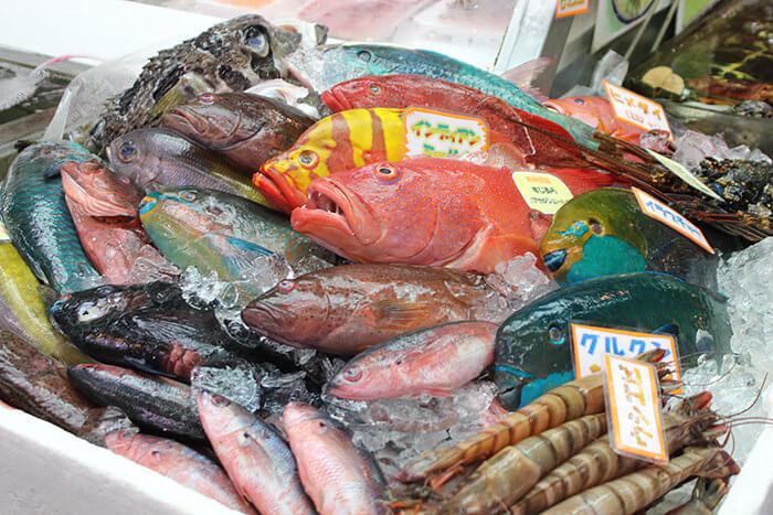 充滿亞熱帶色彩的新鮮海產。擺滿珍奇食材的市場內洋溢著活力。