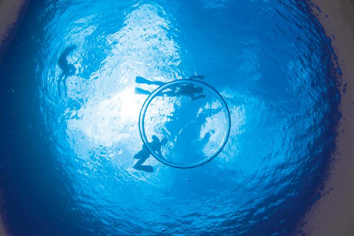 即使是初學者也能穿著潛水裝享受愉快的人氣浮潛行程【青之洞窟浮潛行程】