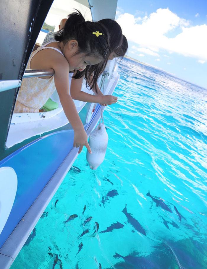 玻璃的另一邊是熱帶魚的樂園
