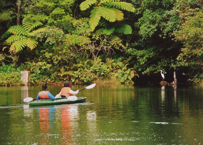 初學者也能穿著一般服裝租借划槳並體驗遊湖樂趣
