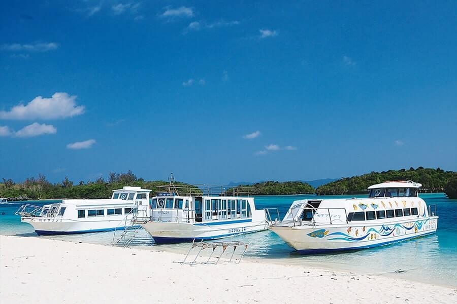 搭乘玻璃小船,跟熱帶魚一起悠遊海下世界。