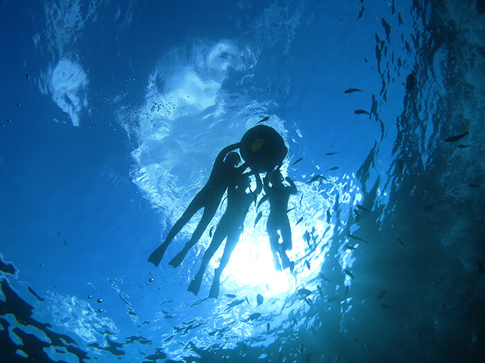想不想在沖繩蔚藍的大海中游泳?