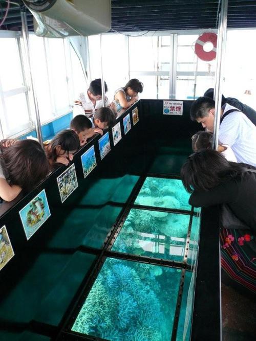 ガラス張りの船底から海中のサンゴや熱帯魚を観察  グラスボートをのぞきこむお客様たちの様子