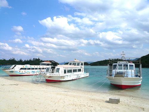 全4種のグラスボート  12名乗りから36名乗りまで。6隻保有