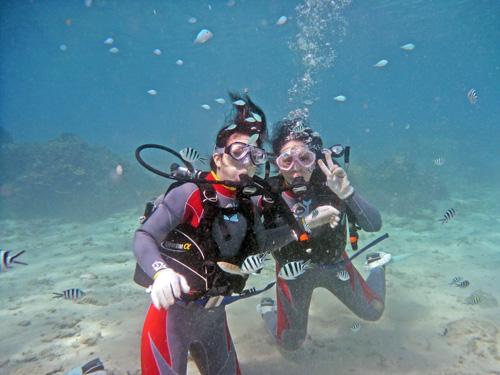 沖縄の大自然が残る海で体験ダイビング。ショップの目の前に海があるからこそ楽して楽しめる