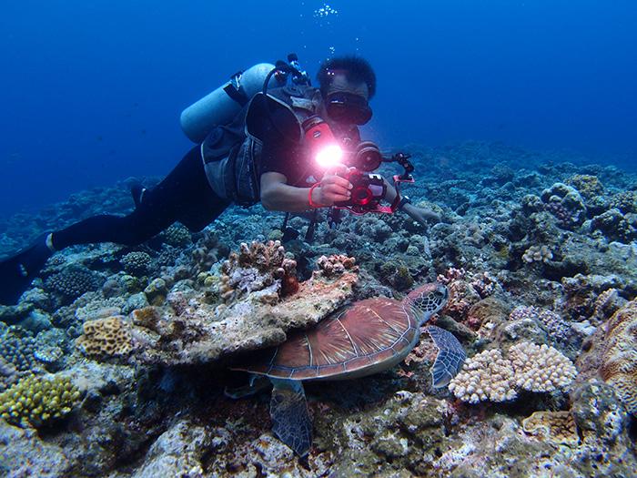 インストラクターが撮る思い出フォト ウミガメを知り尽くしたインストラクターが、一生の思い出になるお写真を撮影します!