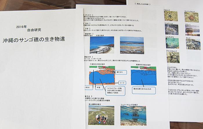 NEW!「夏休み自由研究応援プラン」がGWにスタートします!研究テーマはいくつか用意してあります。興味を持って頂いたテーマにそって海をご案内致します。