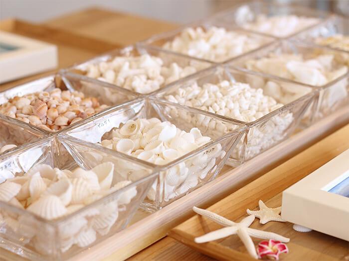 真っ白で綺麗な貝殻は全て使い放題