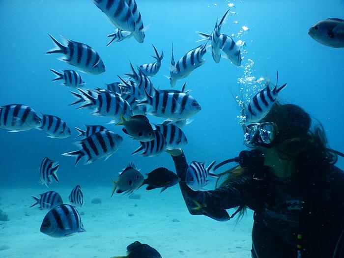 熱帯魚に囲まれて