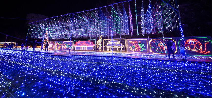沖縄-12月のおすすめイベント4選